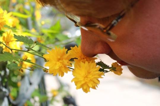 Espen lukter på blomster